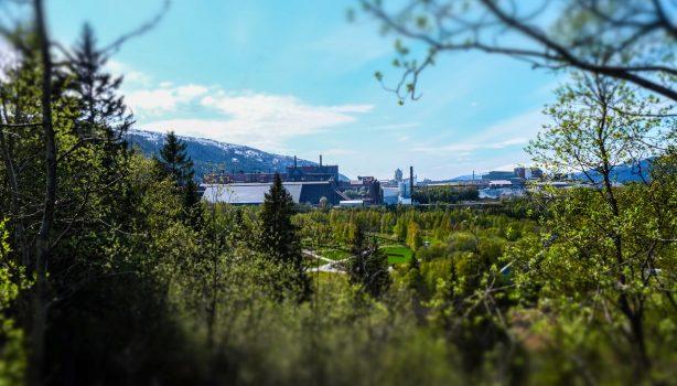 Utsikt over Mo Industripark sett fra skogen